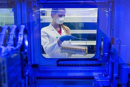 Eine Biologielaborantin mit Proben auf das SARS-CoV-2-Virus. Foto: Daniel Bockwoldt/dpa