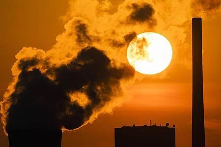 Die Corona-Pandemie hat den ökologischen Fußabdruck der Menschheit in diesem Jahr schrumpfen lassen. Foto: Julian Stratenschulte/dpa