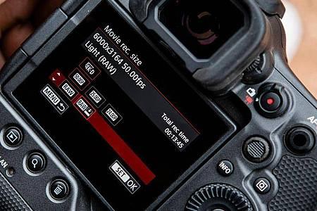 Der elektronische Sucher der Canon EOS R3 soll dank 5,76 Millionen Pixeln Auflösung und 120 Hertz Bildwiederholrate einem optischen Sucher in Nichts nachstehen. Foto: Canon/dpa-tmn