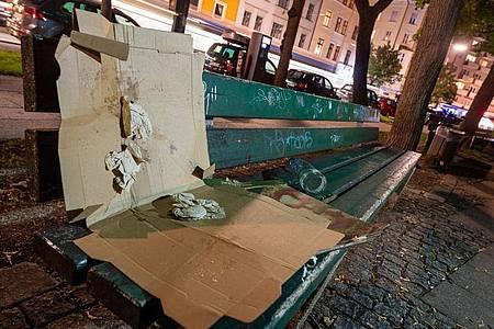 In städtischen Parks und Grünanlagen stapelt sich der Müll von To-go-Verpackungen. Besonders an den sperrigen Pizzakartons stören sich viele Kommunen. Foto: Peter Kneffel/dpa