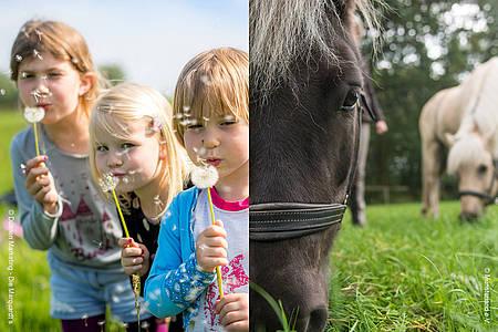 Kinder mit Püsteblumen und ein Pferd