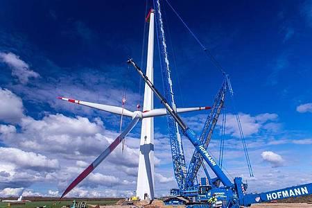 Kommunen sollen mehr vom Windkraft-Ausbau profitieren. Foto: Jens Büttner/dpa-Zentralbild/dpa