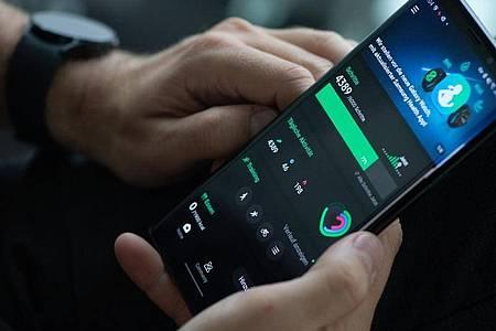 Die erfassten Gesundheitsdaten werden mit der App Samsung Health synchronisiert. Dort werden sie noch einmal optisch übersichtlich aufbereitet. Foto: Franziska Gabbert/dpa-tmn