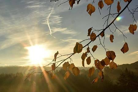 «Wir wissen ja spätestens seit den Sommerferien, dass Reisen insbesondere dazu führen, dass Infektionsketten nicht mehr beherrschbar sein könnten», sagt Schleswig-Holsteins Ministerpräsident Daniel Günther. Foto: Bernd Thissen/dpa