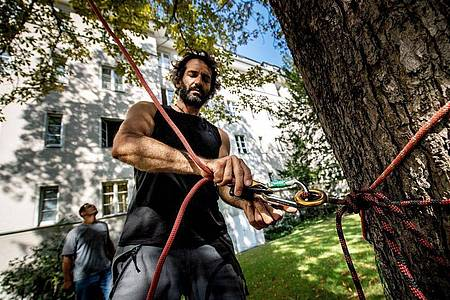 Baumpfleger haben verschiedene Einstiegsmöglichkeiten in den Beruf: Meist beginnt die Ausbildung mit einem Seilklettertechnik-Kurs. Foto: Zacharie Scheurer/dpa-tmn
