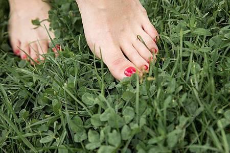 Ein schönes Gefühl mit nackten Füßen über den Rasen zu laufen: Gut gepflege Füße können sich im Sommer sehen lassen. Foto: Christin Klose/dpa-tmn