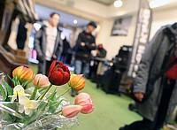 Beckumer Frühling Tulpen