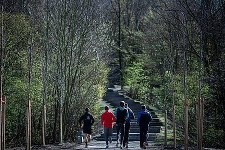 Eine Gruppe Jugendlicher beim Joggen in einem Wald. Foto: Fabian Strauch/dpa