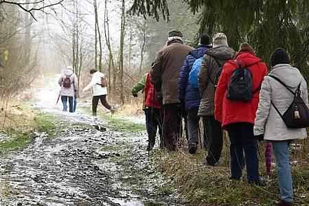 Eine Senioren-Wandergruppe unterwegs auf dem Hohen Gras bei Kassel. Foto: Uwe Zucchi/dpa