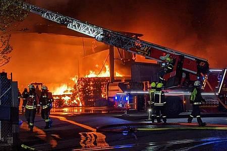 Feuerwehrleute im Kampf gegen die Flammen. Foto: Zahn/vifogra/dpa