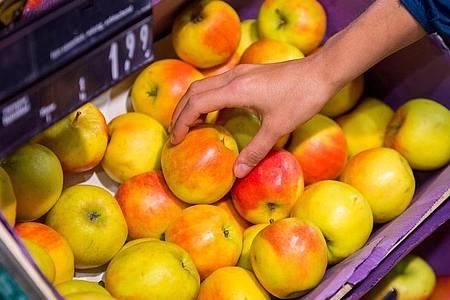Wer einen besonders knackigen oder eher weichen Apfel essen möchte, sollte die Besonderheiten einzelner Sorten kennen. Foto: Benjamin Nolte/dpa-tmn