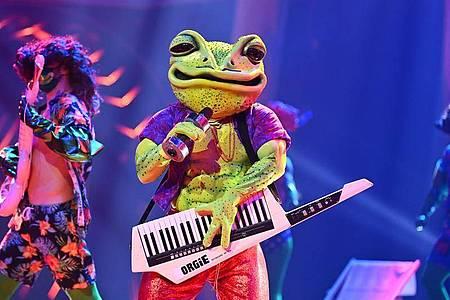 Die Figur «Der Frosch» tritt in der ProSieben-Show «The Masked Singer» auf. Foto: Willi Weber/ProSieben/dpa