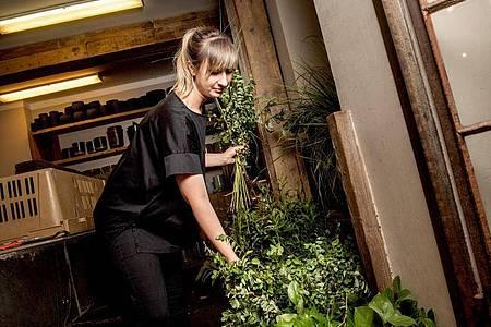 Bei der Arbeit mit Pflanzen und Blumen kann es auch mal dreckig werden: Das darf Lisa Eva Zienc nichts ausmachen. Foto: Zacharie Scheurer/dpa-tmn