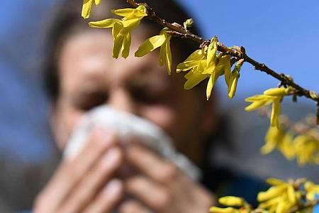 Erleichterung für Allergiker: Corona-Masken können nicht nur Viren, sondern auch Pollenkörner abhalten. Foto: Angelika Warmuth/dpa