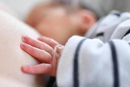 Wenn sie beim Trinken zu viel Luft einsaugen, können Babys Schluckauf bekommen. Foto: Uwe Anspach/dpa-tmn