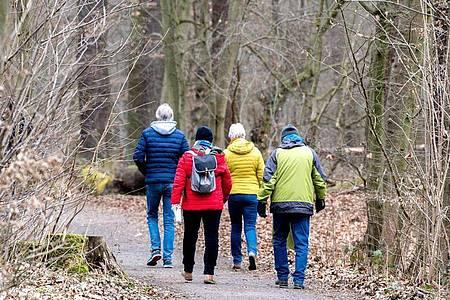 Spaziergänger sind in einem Wald im Naturschutzgebiet Riddagshausen unterwegs. Foto: Hauke-Christian Dittrich/dpa
