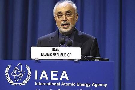 Irans Atomchef Ali Akbar Salehi: «Wir sind dabei, aus der Sackgasse rauszukommen.». Foto: Ronald Zak/AP/dpa