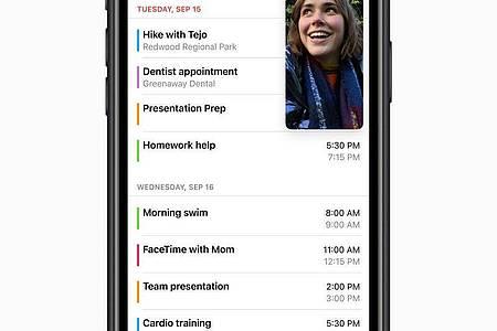 Bild-in-Bild: Mit dieser neuen iOS-14-Funktion kann man Videos oder Videochats in andere Apps mitnehmen. Foto: Apple/dpa-tmn