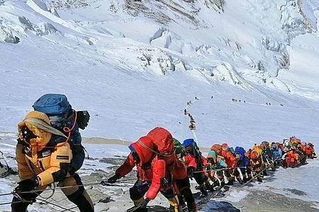 In einer langer Schlange klettern Bergsteiger auf einem Pfad knapp unterhalb von Lager vier. Foto: Rizza Alee/AP/dpa/Archiv
