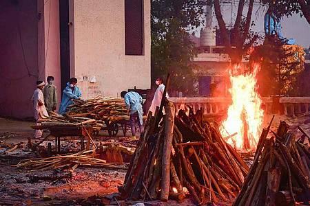 Angehörige eines an den Folgen des Coronavirus Verstorbenenen sammeln in Neu Delhi Holz für die Einäscherung. Foto: Manish Rajput/SOPA Images via ZUMA Wire/dpa