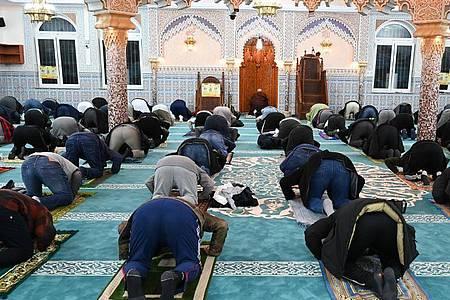 Nachtgebet in einer Moschee in Frankfurt am Main. 82 Prozent der Muslime in Deutschland halten sich laut der Studie für stark oder eher religiös. Foto: Arne Dedert/dpa