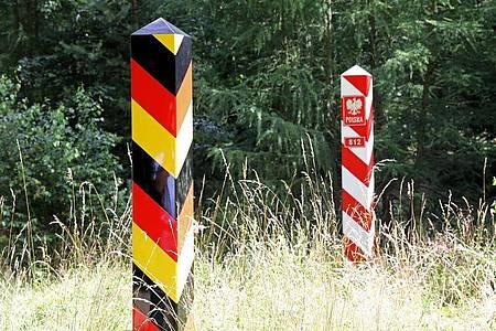 Wenige Kilometer von der deutsch-polnischen Grenze im Spree-Neiße-Kreis ist ein Wildschwein-Kadaver gefunden worden. Foto: Bernd Wüstneck/dpa-Zentralbild/dpa