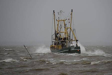 Ein Fischkutter fährt vor Dagebüll über die sturmgepeitschte Nordsee. Greenpeace sorgt sich um die Ökosysteme in Nord- und Ostsee. Foto: Carsten Rehder/dpa
