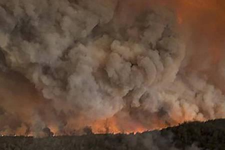 Dichte Rauchwolken steigen im Januar über einem Wald an der australischen Ostküste auf. Foto: Glen Morey/Glen Morey/dpa