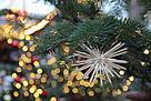 Weihnachten_Baum_Strohstern_Stern