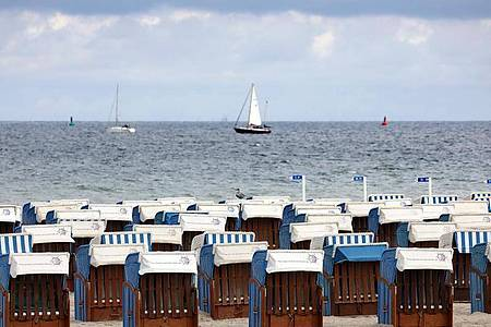 Leer sind die Strandkörbe in Warnemünde. Foto: Bernd Wüstneck/dpa-Zentralbild/dpa