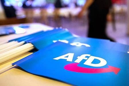 In Dresden kommen 600 Delegierte der AfD zu einem zweitägigen Bundesparteitag zusammen. Foto: Daniel Karmann/dpa