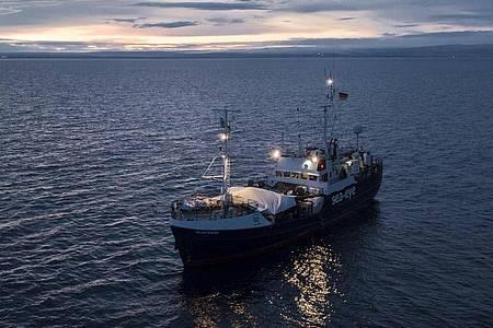 Dieses von der Hilfsorganisation Sea-Eye zur Verfügung gestellte Foto zeigt das deutsche Rettungsschiff «Alan Kurdi». Foto: Karsten Jäger/Sea-Eye/dpa