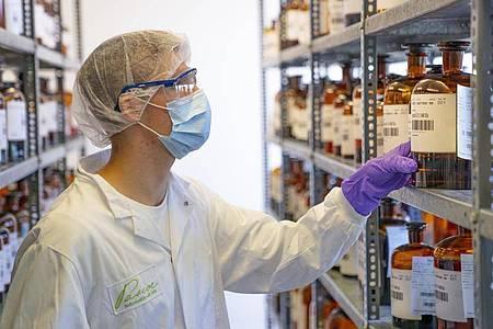 Mundschutz, Haube und Handschuhe gehören zu seinem Berufsalltag: Paul Boos achtet bei der Arbeit besonders auf Hygiene. Foto: Pascoe Naturmedizin/dpa-tmn