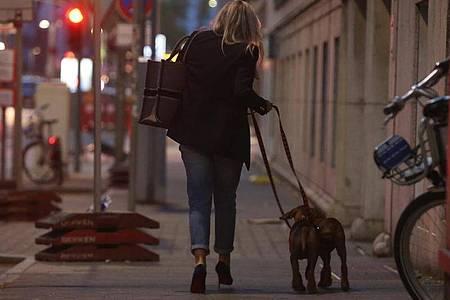 Eine Frau in Düsseldorf geht am Abend mit ihren Hunden spazieren. Foto: David Young/dpa