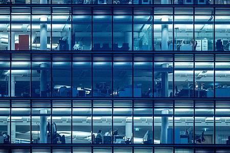Britische Wissenschaftler fanden heraus: Für zufriedenes Arbeiten im Großraumbüro ist es wichtig, was sich im eigenen Sichtfeld befindet. Foto: Michael Kappeler/dpa