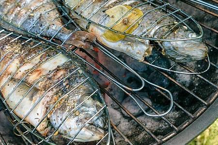 Mit ausreichend Öl, und nicht zu nah an der Hitze: Doraden und Forellen gelingen auf dem Grill besonders einfach. Foto: Markus Scholz/dpa-tmn