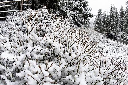 An diesem Freiatg gab es im Harz nochmal Schnee. Foto: Swen Pförtner/dpa
