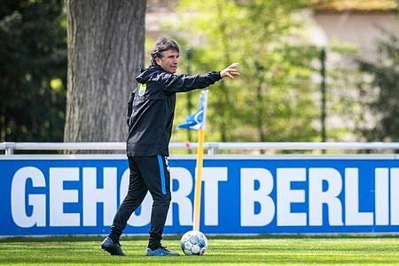 Bruno Labbadia feiert im Berliner Derby gegen Union sein Heim-Debüt als Hertha-Coach. Foto: Jan-Philipp Burmann/Hertha BSC via City-Press GmbH/dpa