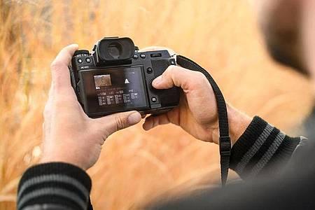 Wer erste Gehversuche mit einer Kamera macht, kann sich zunächst einmal auf die Programmautomatik (P) verlassen. Foto: Sina Schuldt/dpa-tmn