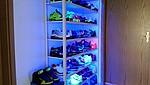 Beleuchtetes Regal mit Sneaker
