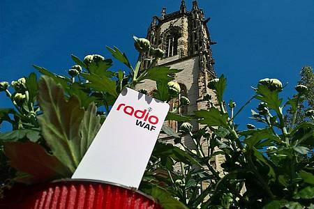 Blume von Radio WAF vor der Oelder Kirche